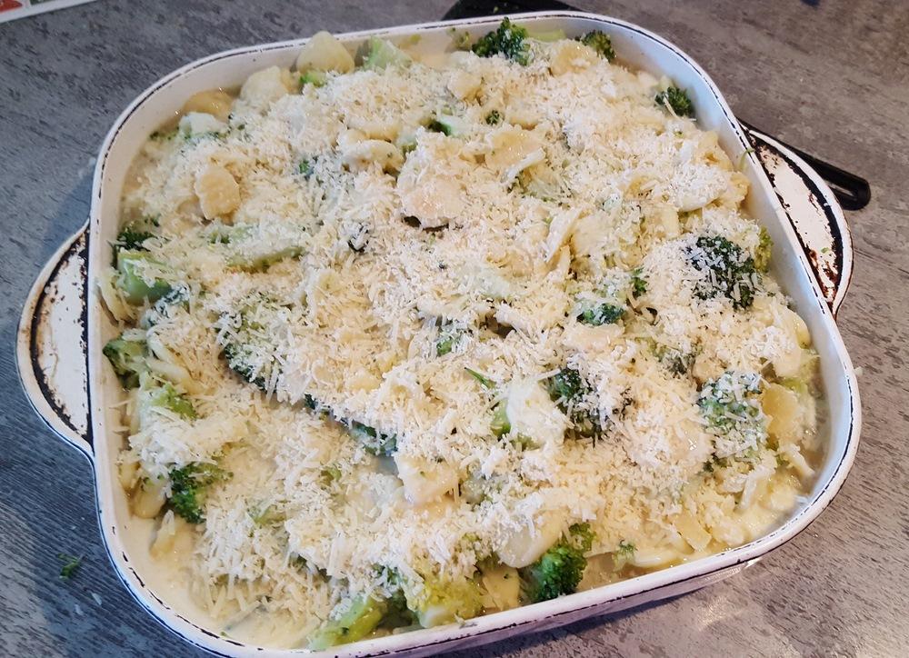 grattin-pate-brocolis