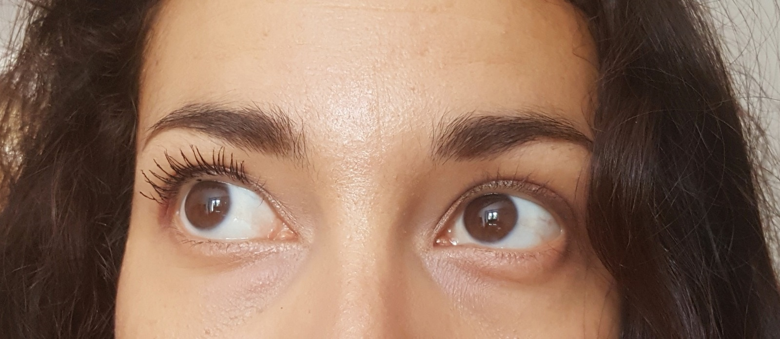 mascara upcils l'Atelier du Sourcil test