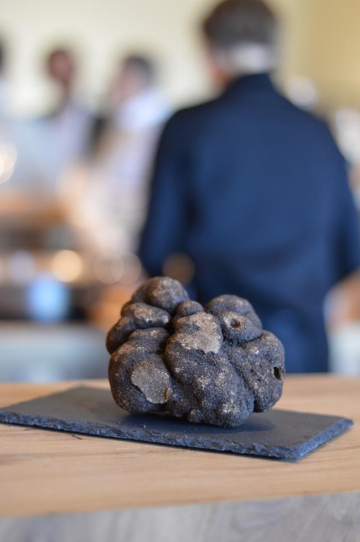 truffe noire hiver Plantin